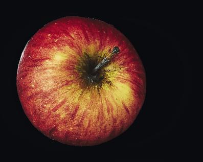 Camembert Le Rustique & Confit de pomme et noix au lambig