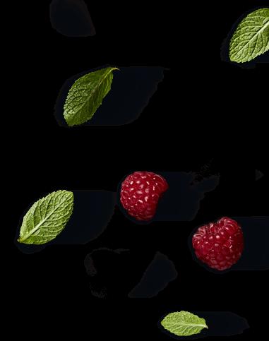 Camembert Le Rustique & Perles de saveurs framboise